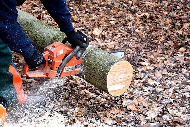 electric chainsaw vs. gas powered