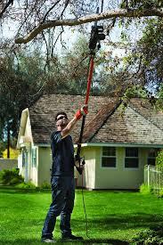 man using a pole saw in his yard